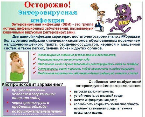 Осторожно! Энтеровирусная инфекция