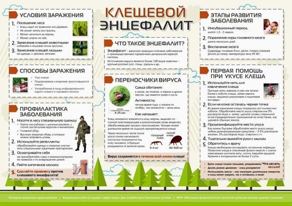 plakat-Kleshhevoy-e`ntsefalit1