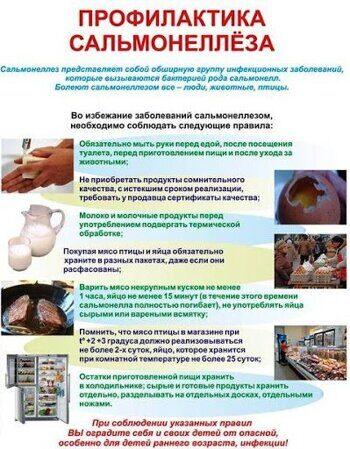 profilaktika_salmoneleza.jpg