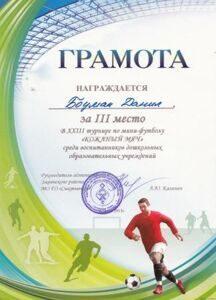futbol-2013